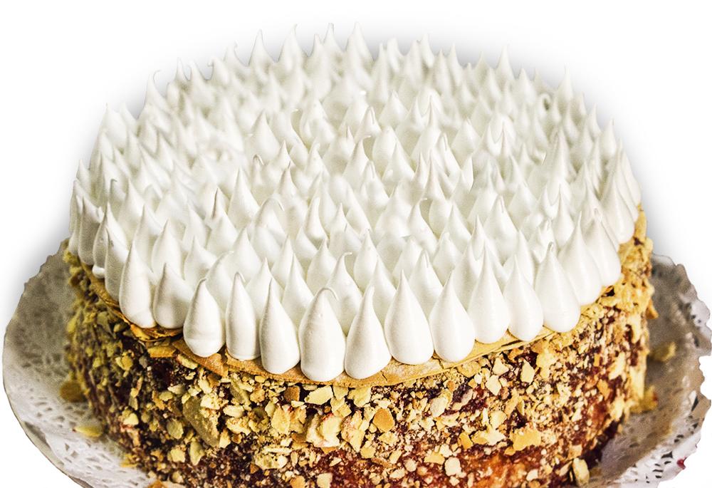 tortaisidora